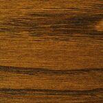 Castagno castagna